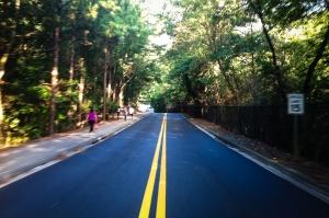 emory road blurred